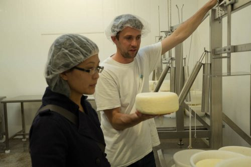 Cheese maker Shep shows us the cheesemaking process