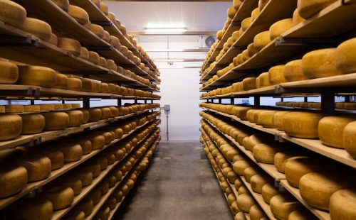 Big Cheese Day Oxford County