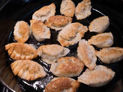 turkey chinese dumplings