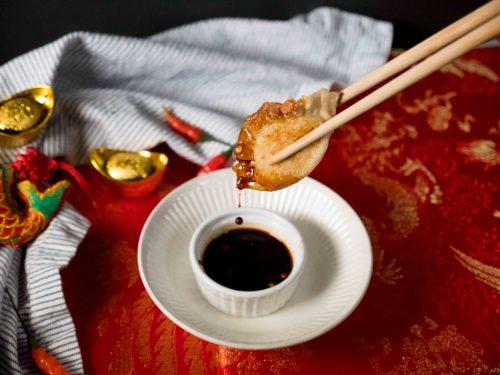 chinese turkey dumplings