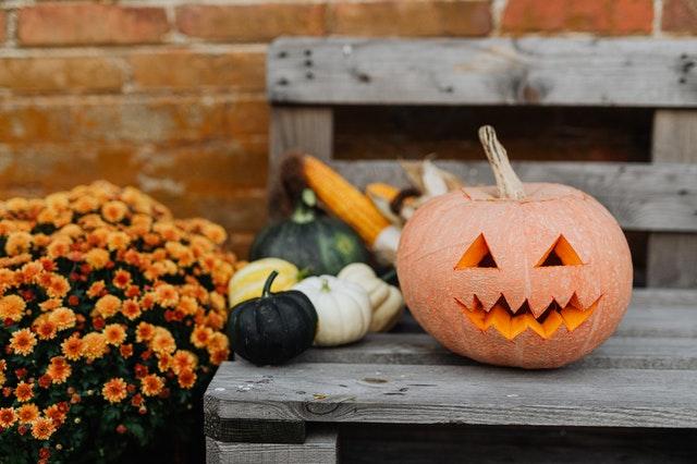 hamilton halloween activity